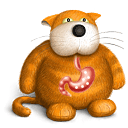 Leaky Gut Cat icon